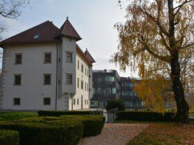 Dvorec Drnča 2